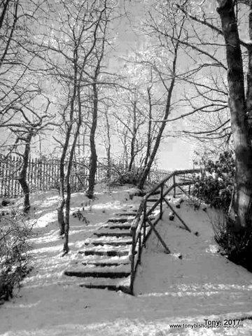 1-winter pics 043-001.jpg