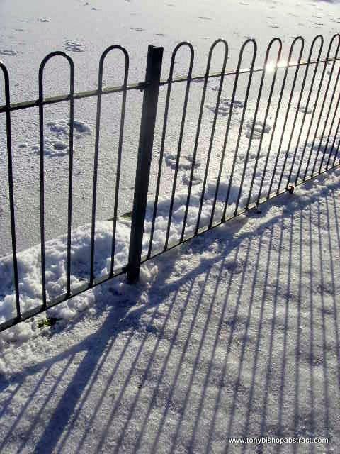 1-winter pics 096.jpg