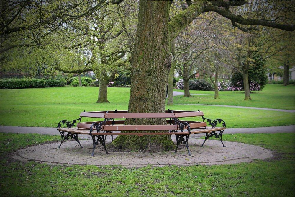 Victoria_Park_-_Tree_Bench.jpg