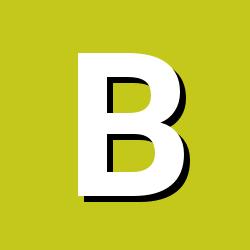 Br1an